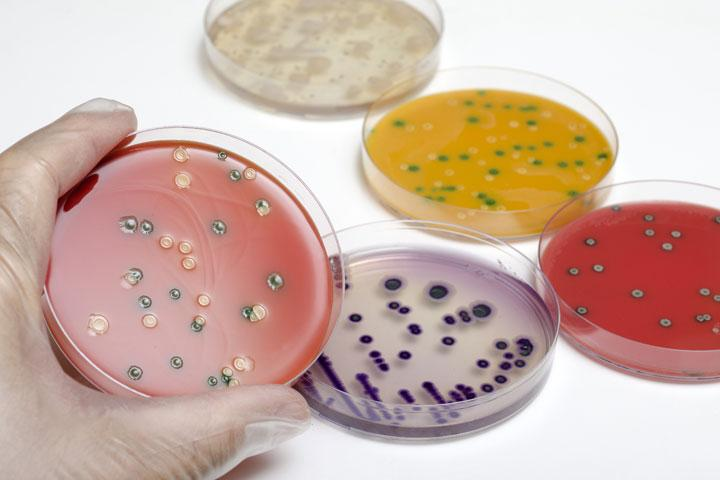 Prevent Listeria in production environments